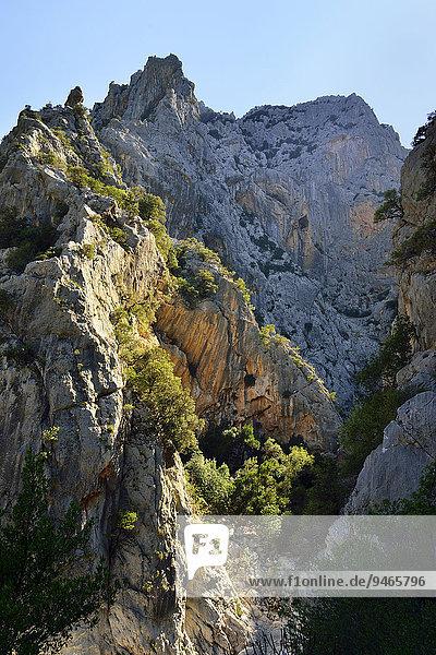 Steile Felswände in der Schlucht Gola Gorropu  Gennargentu-Nationalpark  Supramonte  Provinz Nuoro  Sardinien  Italien  Europa
