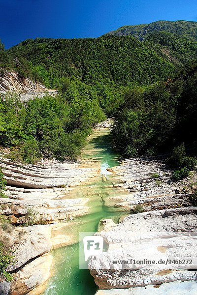 Frankreich Provence - Alpes-Cote d Azur Region In Nordamerika Alpes maritimes
