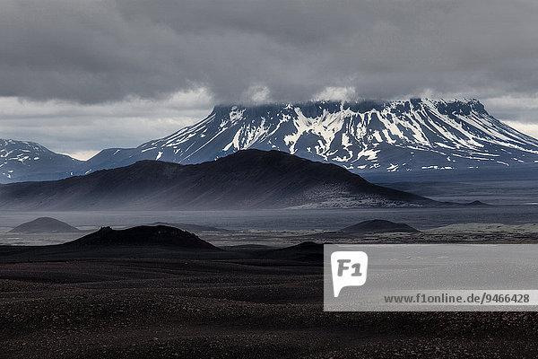 Lavafelder  Vulkanlandschaft  Nordisland  Island  Europa