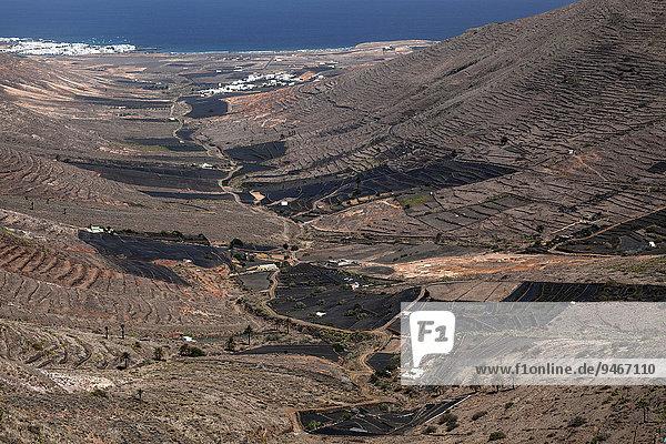 Ausblick vom Mirador de Haria ins Valle de Temisa  Terrassenfelder  Terrassenfeldbau  hinten Tabayesce und Arrieta  Lanzarote  Kanarische Inseln  Spanien  Europa