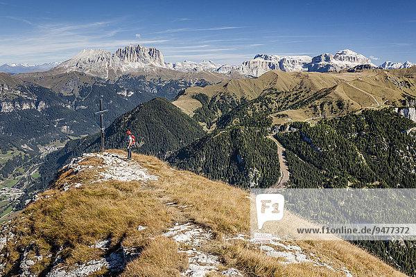 Bergsteiger auf dem Gipfel der Cima Dodici  Sas da le Doudesh im Val San Nicolo im Fassatal  hinten der Langkofel und der Plattkofel und die Sellagruppe  unten das Fassatal  Dolomiten  Trentino  Pozza di Fassa  Trentino-Alto Adige  Italien  Europa