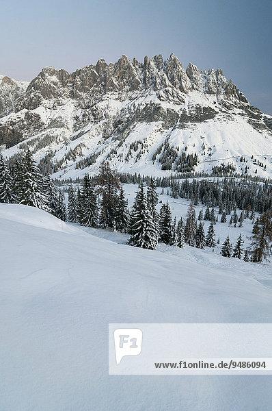 Mandlwände in winter  Salzburg  Austria  Europe