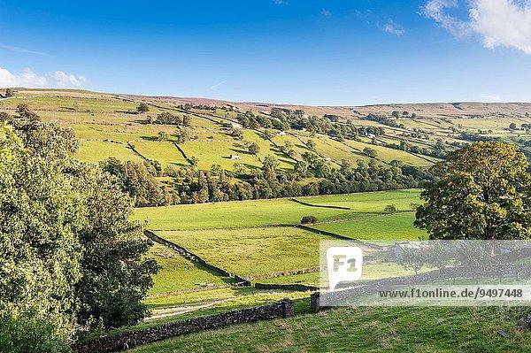 britisch Großbritannien Yorkshire and the Humber Tal England Swaledale