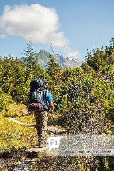 Rucksack entfernt einsteigen Berg Mann Weg Wald Berggipfel Gipfel Spitze Spitzen wandern vorwärts Menschenreihe Laub