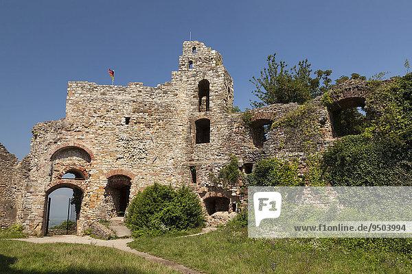 Ruine der Burg Staufen  Staufen im Breisgau  Schwarzwald  Baden-Württemberg  Deutschland  Europa