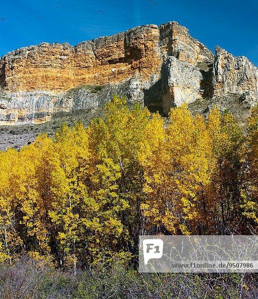 Europa Landschaft Steilküste Schlucht Leon Segovia Spanien