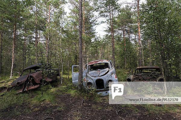 Autofriedhof im Wald  Schrottautos  Kyrkö Mosse  bei Ryd  Smaland  Schweden  Europa