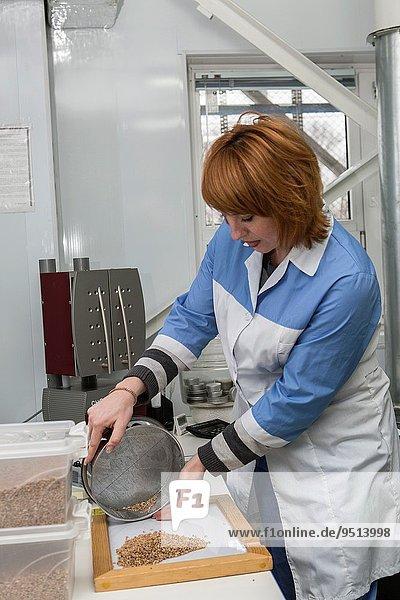 The Russian Federation  Belgorod region  scientific associate.