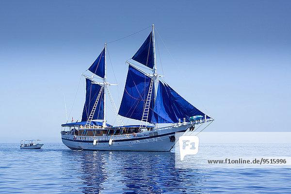 Diving sailing ship PALAU SIREN  Palau  Micronesia  Oceania