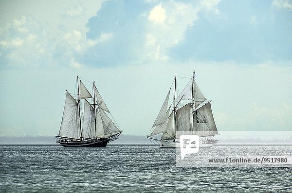 Windjammern, Kieler Bucht, Schleswig-Holstein, Deutschland, Europa