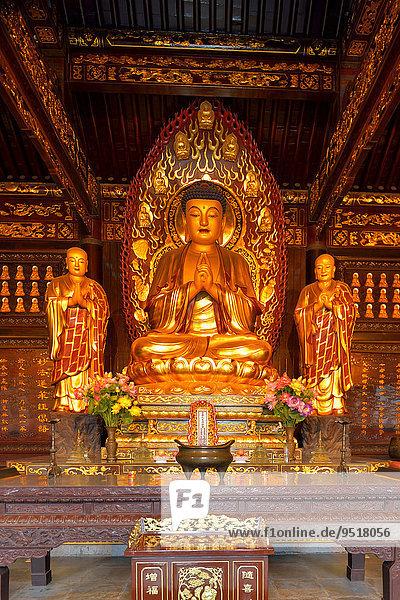 Goldene Buddha-Statue und Reliquien in der Großen Wildganspagode  Xi'an  Provinz Shaanxi  China  Asien