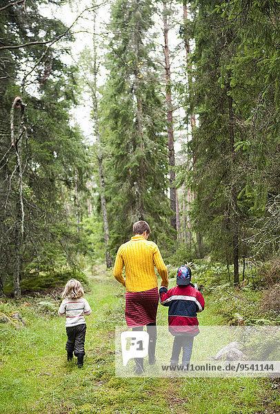 gehen Wald 2 Mutter - Mensch