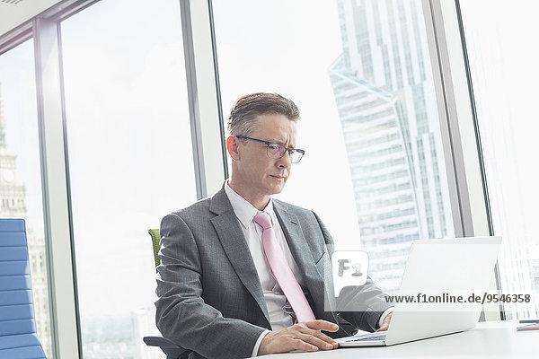 benutzen Notebook Geschäftsmann reifer Erwachsene reife Erwachsene Büro