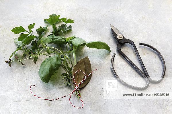Bouquet garni und Schere