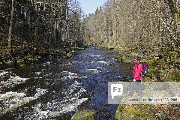 Deutschland  Niederbayern  Bayerischer Wald  Wanderer an der Ilz bei Diessenstein