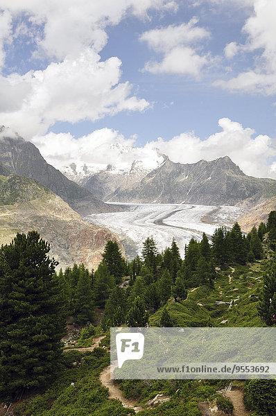 Schweiz,  Wallis,  Jungfrau-Aletsch-Bietschhorn,  Aletschgletscher