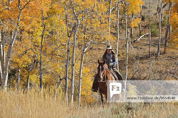 USA  Wyoming  Big Horn Mountains  Reiten Cowgirl im Herbst