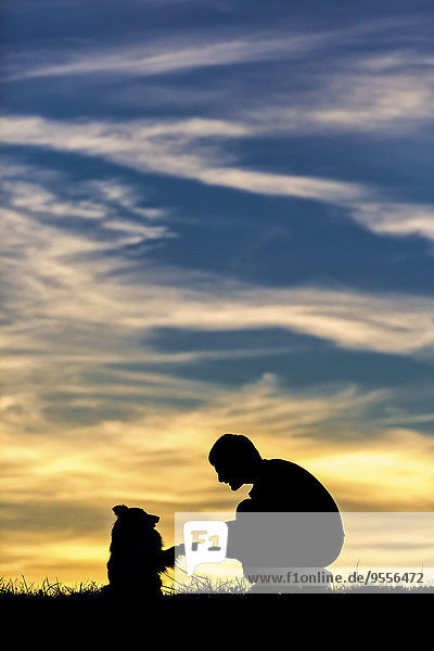 Germany  Man with dog  Silhouettes at sunset