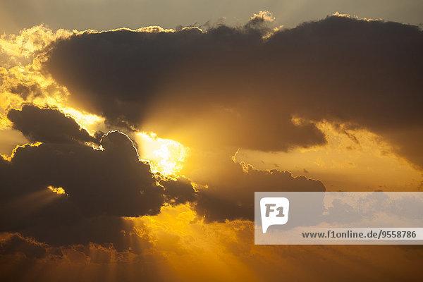 Niederlande  Den Haag  Scheveningen  Wolken und Abendsonne