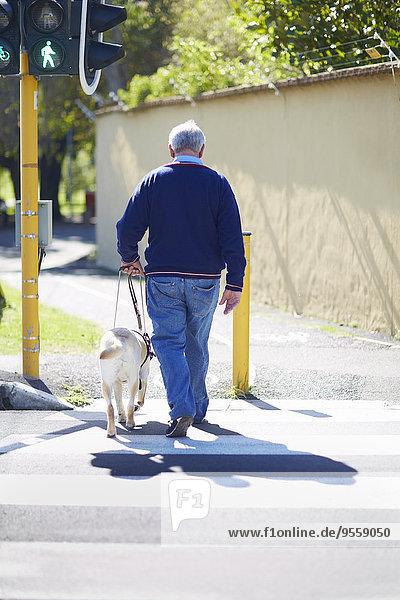 Sehbehinderter Mann beim Überqueren einer Straße mit seinem Blindenhund