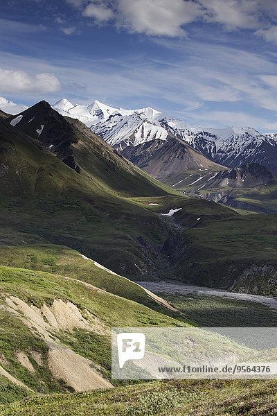 Vereinigte Staaten von Amerika USA Denali Nationalpark Alaska