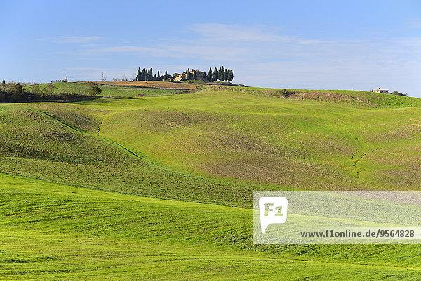 Italien Pienza Toskana Val d'Orcia Provinz Siena