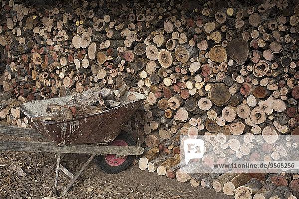 Schubkarre mit Brennholzstapel