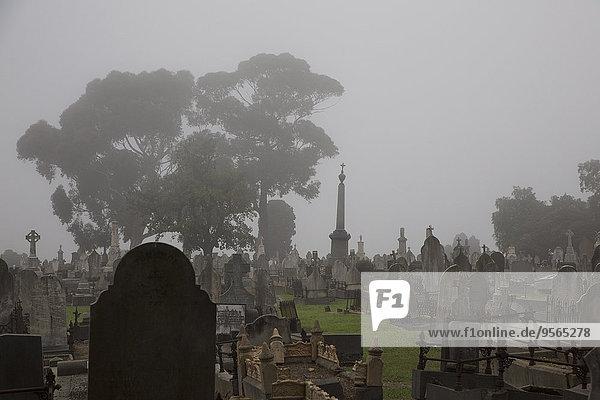 Victoria,Grabstein,Australien,Friedhof,Melbourne