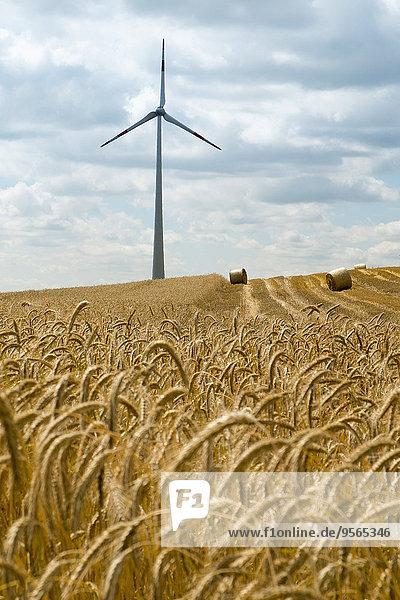 Getreide und Windmühle auf dem Feld gegen bewölkten Himmel