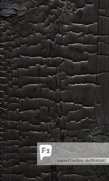 Vollbildaufnahme von strukturiertem Holz