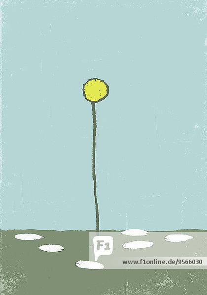 Illustrative Darstellung der auf den Boden gefallenen Blütenblätter