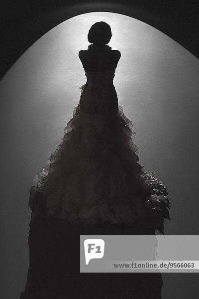 stehend,beleuchtet,Braut,schwarz,Hintergrund,Rückansicht,Ansicht