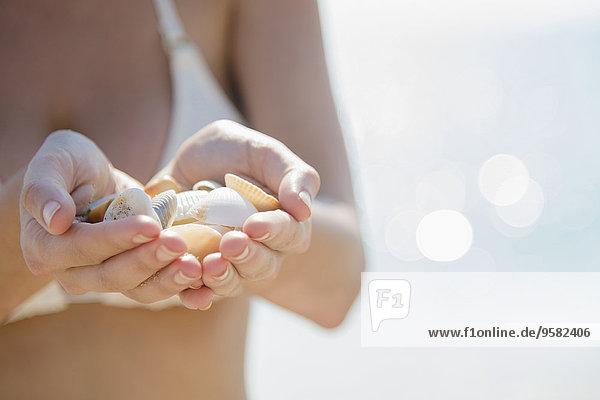 Europäer Frau Strand halten Close-up Seemuschel