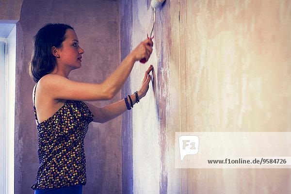 Racken Coraciidae Frau Wand streichen streicht streichend anstreichen anstreichend Farbe Farben bemalen