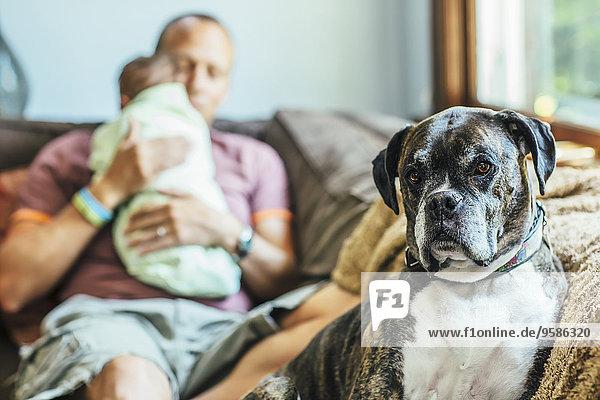 sitzend Europäer Couch Junge - Person Menschlicher Vater Hund Baby