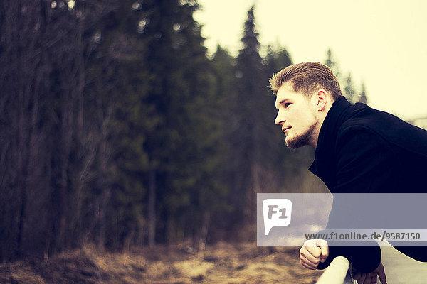 Außenaufnahme Europäer Mann Bewunderung Wald freie Natur