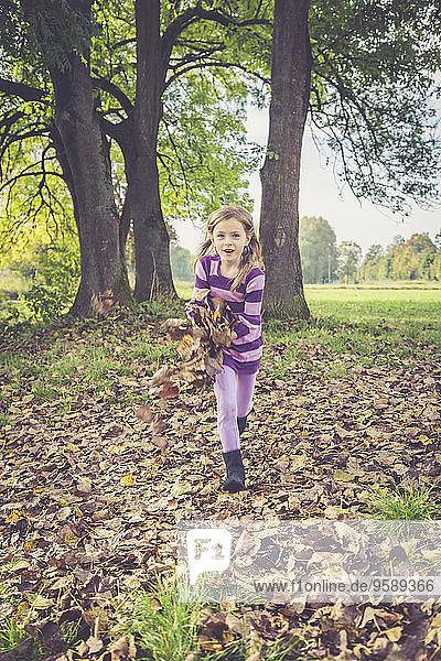 Kleines Mädchen spielt mit Herbstblättern