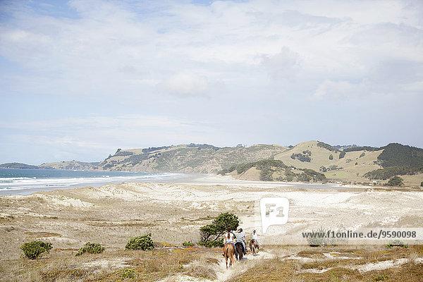Horse riding  Pakiri Beach  Auckland  New Zealand