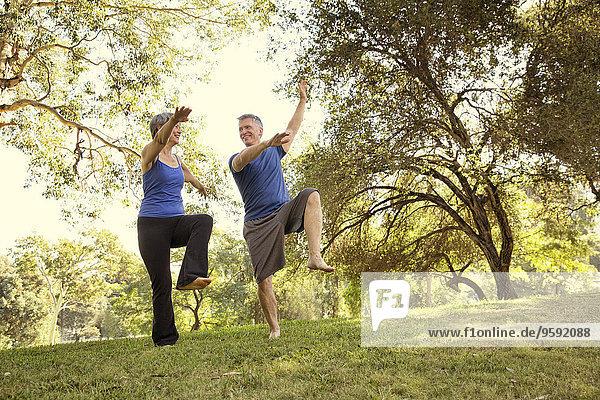 Reife Paare  die Yoga-Positionen im Park praktizieren