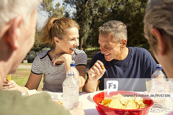 Four mature adult friends chatting over picnic lunch in park