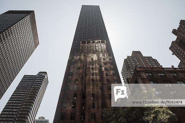 Wolkenkratzer  Manhattan  New York  USA