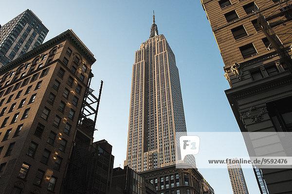 Empire State Building  Manhattan  New York  USA