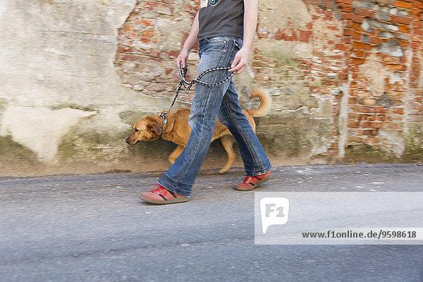 Mann gehender Hund auf der Straße  Ghemme  Novara  Italien