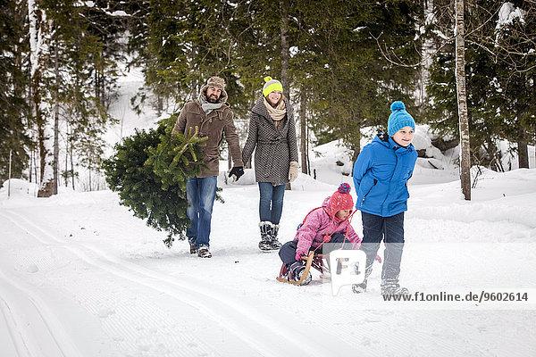 bedecken tragen Landschaft Weihnachtsbaum Tannenbaum 2 Schnee
