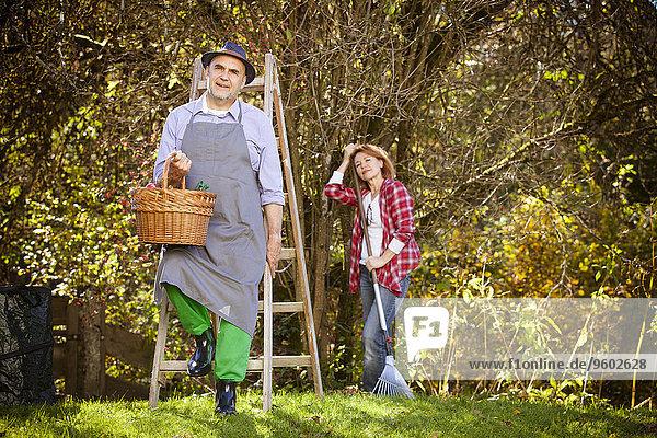 Family picking apples  Munich  Bavaria  Germany