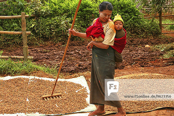 Myanmar  working mother carrying child on back