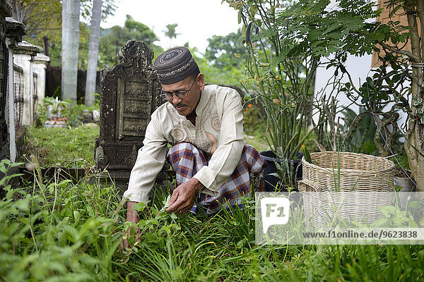 Indonesien  Aceh  Lam Rukam  Gartenpfleger mit Grabsteinen zum Gedenken an seine toten Verwandten