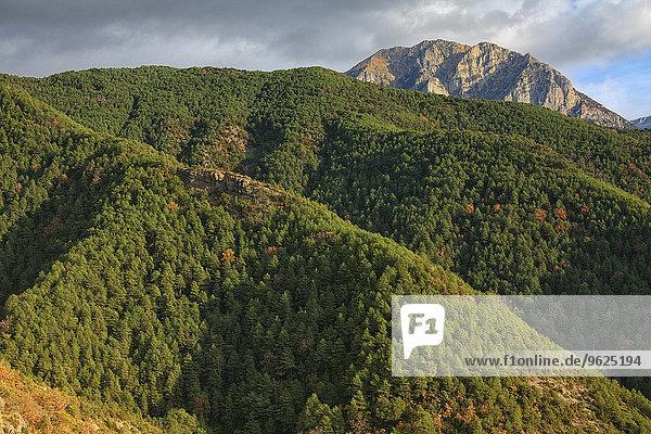 Spanien  Nationalpark Ordesa  Berglandschaft mit Wald