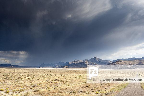 USA  Nevada  landscape in Great Basin National Park