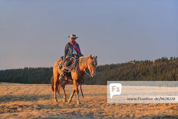 USA  Wyoming  Cowgirlreiten im Abendlicht